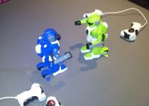 Bitva Robotů